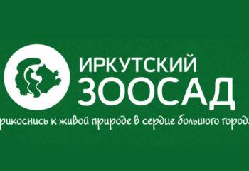 180913-1-00-irkdetzoo.ru