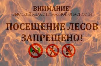 200704-2-00-no-walking-in-the-woods