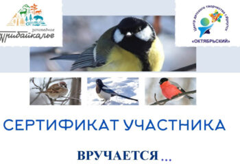 201221-2-00-titmouse-day