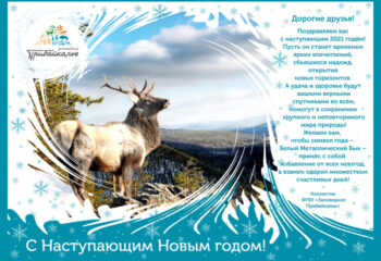 201230-3-00-happy-new-year-2021